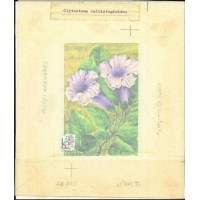 AFGHANISTAN 1985. Flower Stamp Exhibition Argentina 85 issued 30AFS. Stamp Artist´s Work. Motif:159/202mm