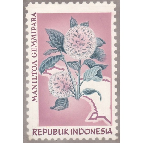 INDONESIA 1968 Flora Plant Flowers C Stamp Artist´s works signed issued 128/201mm