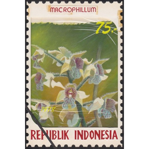 INDONESIA 1978 Larged-leaved vl.g.A Orchid 75.' Artist´s works signatured 128/188mm