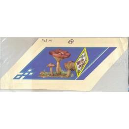 MONGOLIA 1978 Fungi Mushrooms Stamp Artist´s Original pre-study issued:30f 362 x 110mm