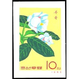 Korea DPR (North) 1966. Flower 10w A Signed Artist Stamps Works Size:114/139mm KP Post Archive Mark