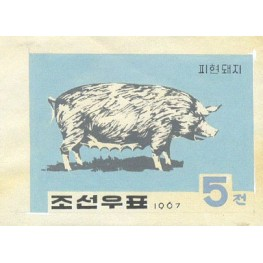Korea DPR (North) 1967. Farm dirty pig 5w. Signed Artist Stamps Works. Size: 170/130mm KP Post Archive Mark