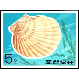 Korea DPR (North) 1969. Marine Life small shell 5w. Artist Stamps Works. Size: 151/111mm