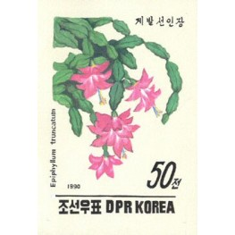 Korea DPR (North) 1990. Cactus Flowers 50w. Signed Artist Stamps Works. Size: 120/160mm  KP Post Archive mark