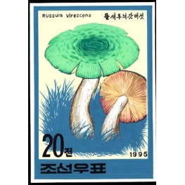Korea DPR (North) 1995. Mushrooms Funghi 20w. Signed Artist Stamps Works. Size: 124/176mm  KP Post Archive mark