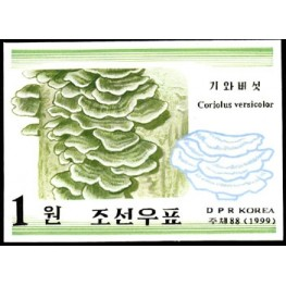 Korea DPR (North) 1999. Mushrooms Funghi 1w. Signed Artist Stamps Works. Size: 109/151mm  KP Post Archive mark